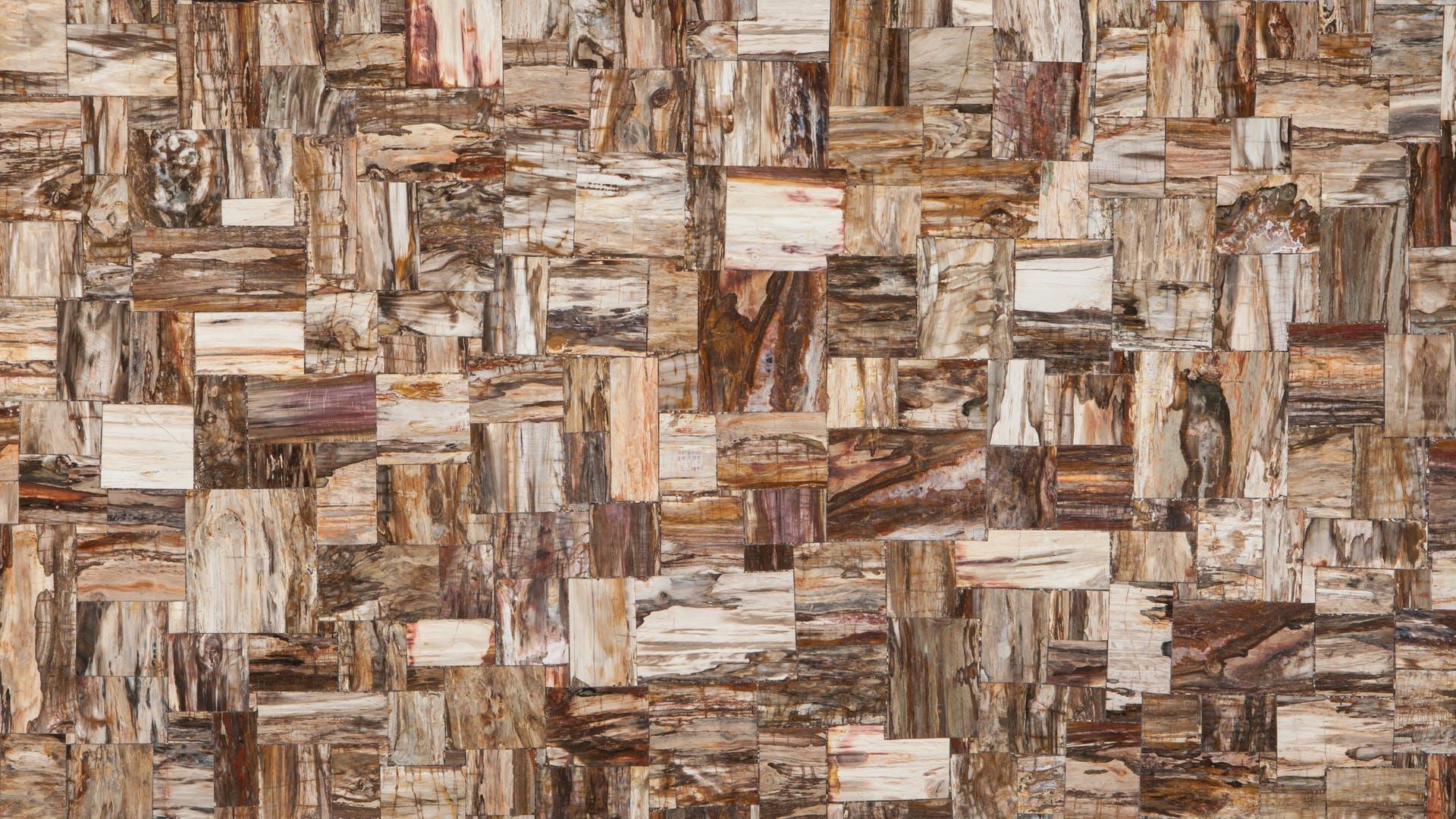 Placa de Piedras Semipreciosas Retro Petrified Wood Pulido Prexury Collection